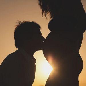 cambios en la familia durante la gestación y la crianza