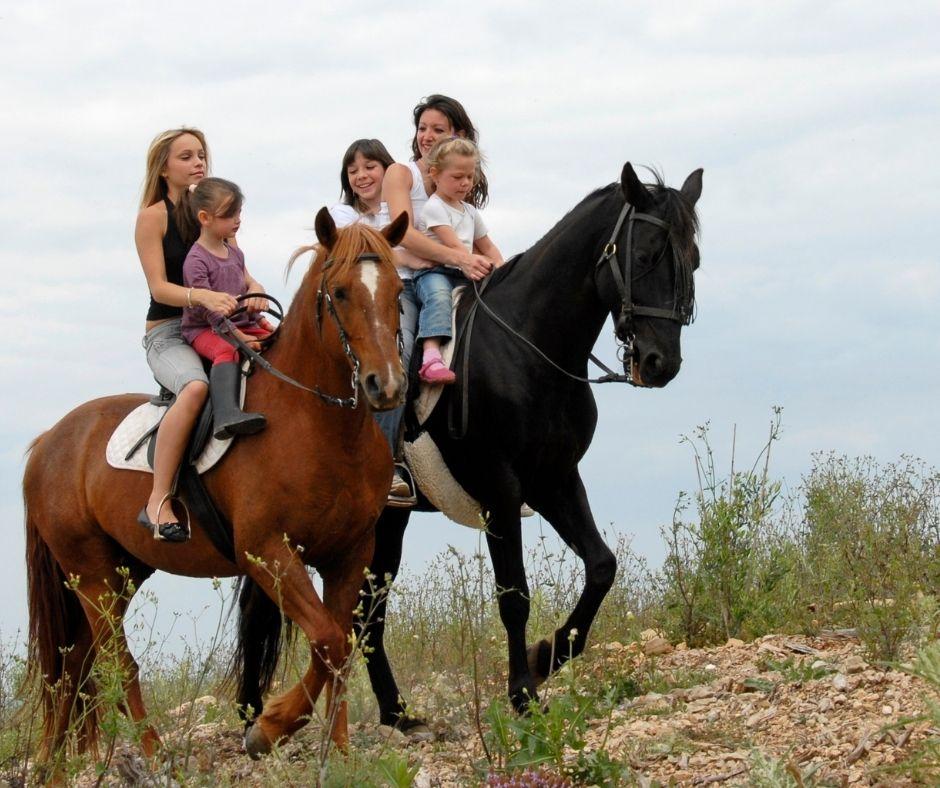 coaching asistido por caballos