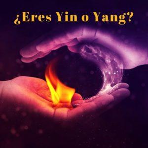 ¿Eres yin o yang?