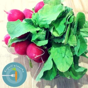 clorofila-sangre-verde-mathias-hespe-portada