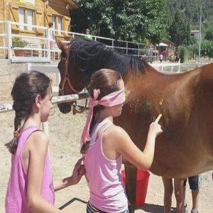 A través de la equitación terapéutica se realiza un trabajo emocional muy importante