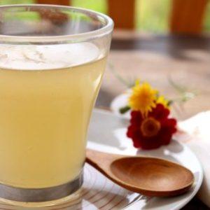 kuzu terapeutico receta bebida con manzana