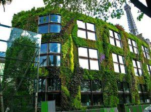 edificios sanos y bioconstruccion