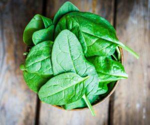 espinacas frescas para batidos verdes