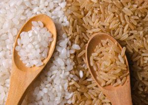 la microbiótica y el arroz