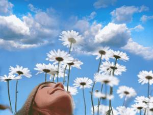 revive la muerte y el arte de vivir
