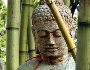 meditacion consciente al movimiento