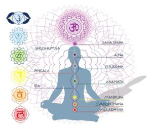 En el Yoga se habla que tenemos tres canales energéticos principales