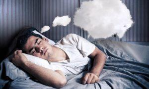 La vida en los sueños