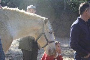 Si tenemos miedo el caballo no hará caso