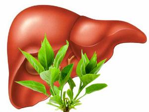 Útil cuando el hígado está sobrecargado o enfermo