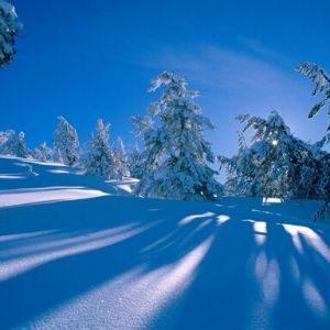 """Cuento para sentir """"tuenmí"""" invierno"""