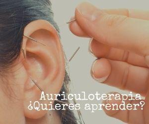 auriculoterapia técnica eficaz