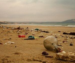 invasión del plástico en las playas y el mar