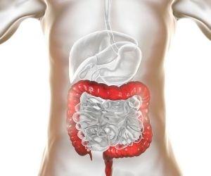tránsito intestinal mejora con aloe vera