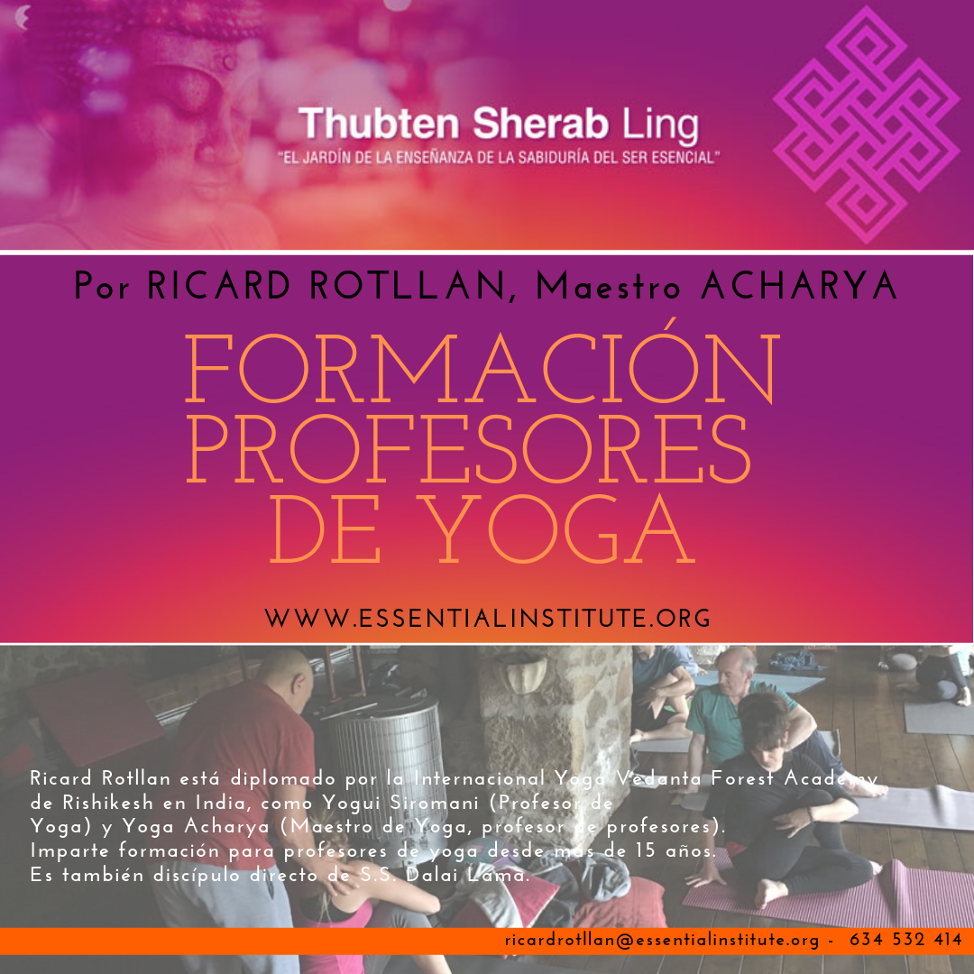 Formación profesores yoga Essential Institute