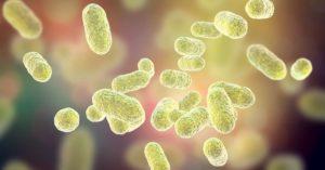 alimentos favorecen microbiota intestinal imagen artículo Sanamente Net
