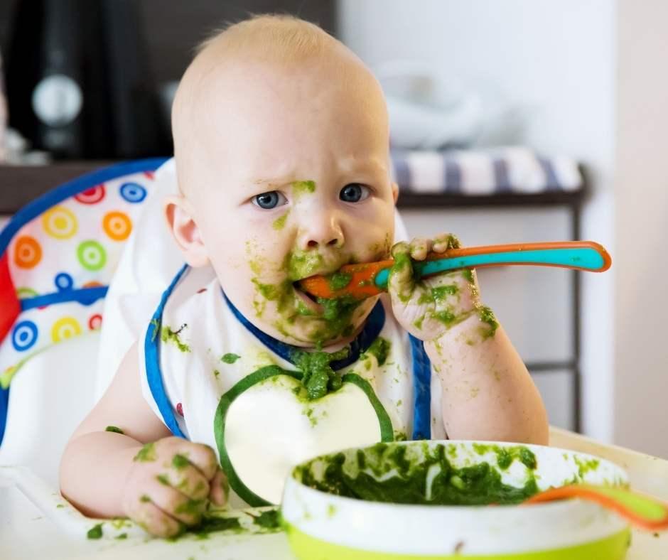 Introducción paulatina de los alimentos durante los primeros meses