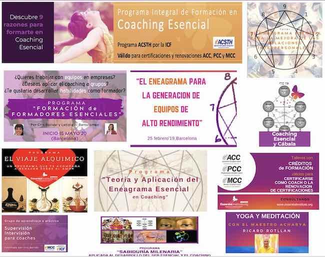 Essential Institute by Cris Bolívar