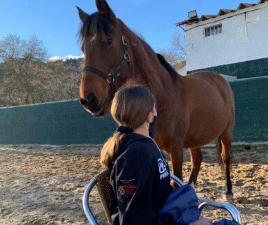 Método integración terapéutica con caballos