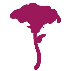 logo laMalvaflor