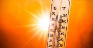 problemas de salud en verano artículo de sanamente