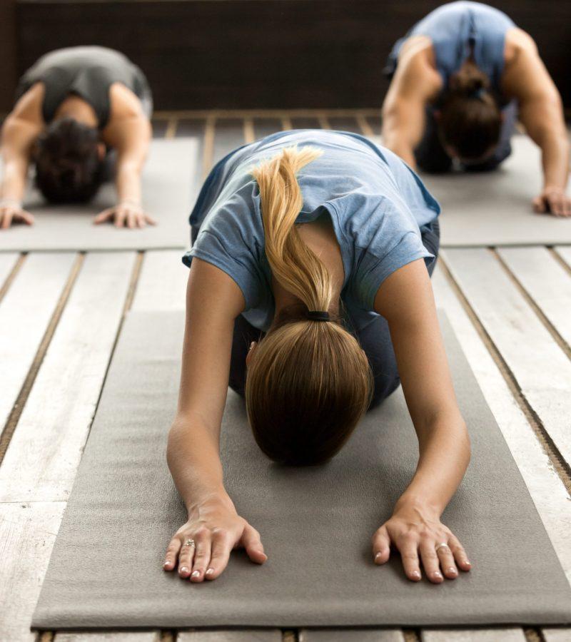 directorios terapeutas yoga y publicidad